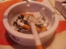 капля никатЦина убивает лошадь...а хомячка разывает на куски....гг.. не куриТе дзети сигареты!