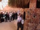Монастырь Святой Екатерины (Синай) дерево Неопалимая купина в огне которой Бог  предстал перед Моисеем