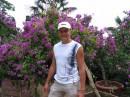 ботанический сад в крыму