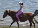 Лошади.... это моя слабость!!!
