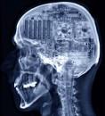 мозг НАСТАЯЩЕГО сисадмина