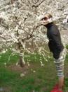 Весна.........
