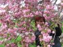 закарпатська весна:)