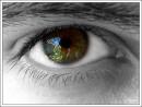 Моё всевидящее око!