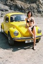 International VW beetle rally-summer 2005