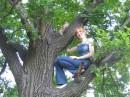 люблю я все-таки по деревьям лазить..) мрр))