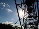 Sun_day in park
