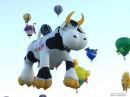 а, ведь, летают же коровы...