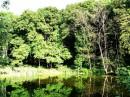 Панский пруд