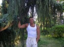 В Форосском парке, июль 2006
