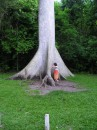 my sis ) da biggest tree i've ever seen ))