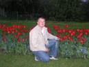 Много красивых ....Тюльпанов.