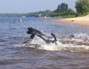 прыжки в воду)))