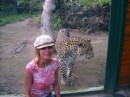 зоопарк г. Будапешт