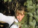 В елках:))