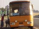 Афтобус с животнаме