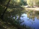 Лесное озеро. Глубокое и холодное.