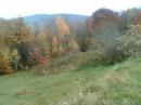 Барви осені