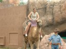 me and a camel:-)))