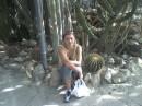 Аранджерея кактусов в КРИМУ
